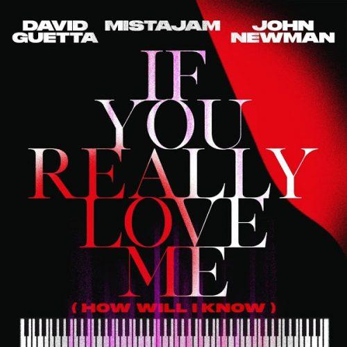 David Guetta x MistaJam x John Newman – If You Really Love Me (How Will I Know)